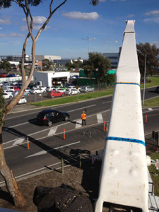 Melbourne airport tree pruning